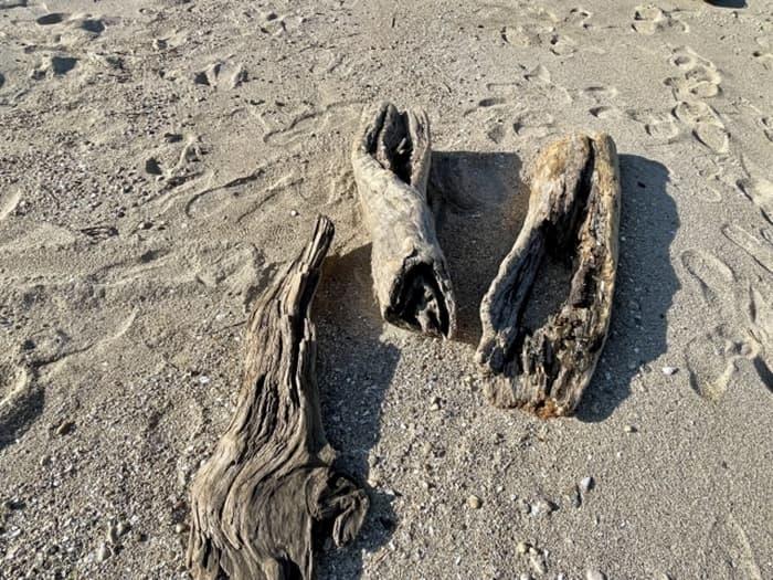 海の流木の塩気は抜ける?